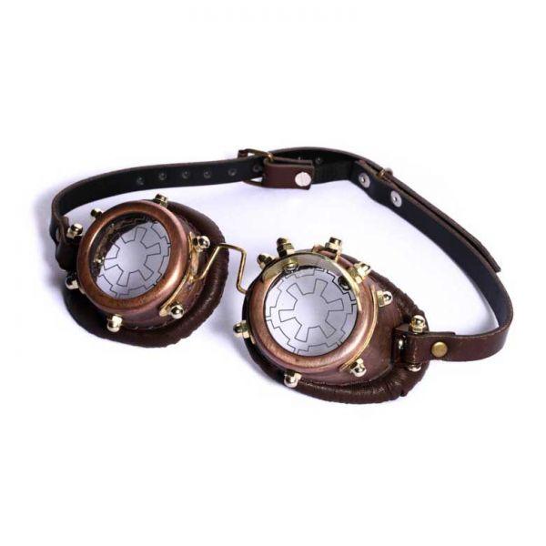 Steampunk Brille mit Wechselgläsern und Schatulle
