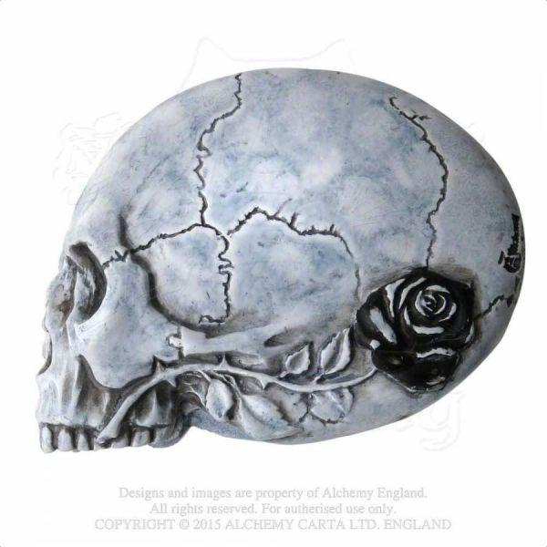 Gothic Handspiegel im Totenschädel Design mit Krähe